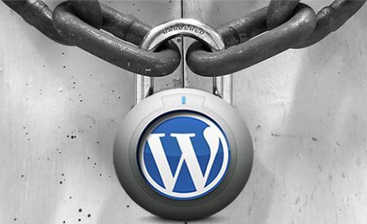wordpress, diseño web, diseño, desarrollo